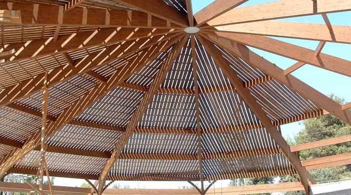מבנה עץ, שמיים ירוקים, ג'ויה מיה